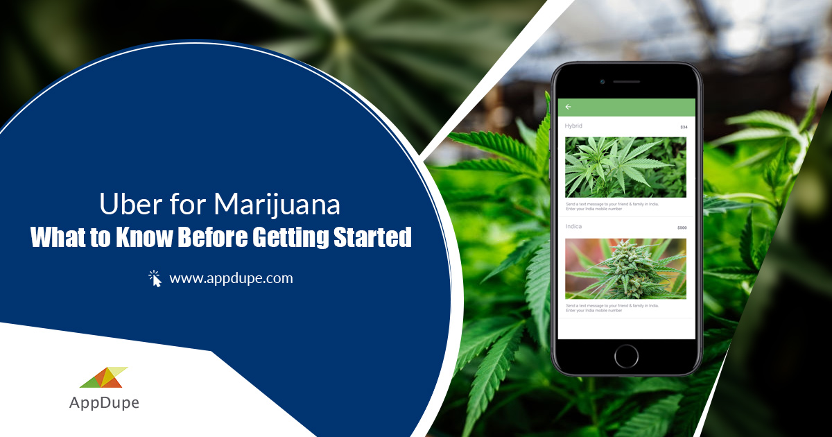 Uber_like_App-For_Marijuana