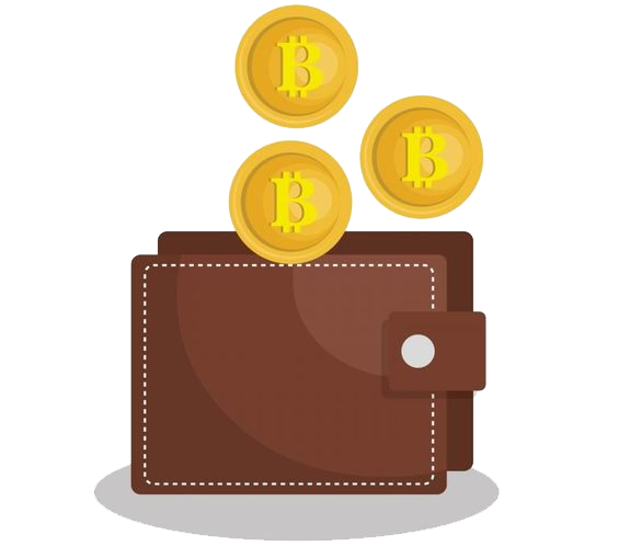 Make your own cryptocurrency wallet