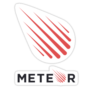 hire meteor js developers